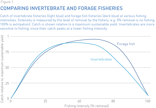 Invertebrate fisheries